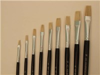 Eterna 577  Brushes