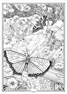 COOL ART DOODLE POSTER BUTTERFLYS