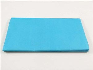 TISSUE PAPER 10sht LT BLUE 500x750mm
